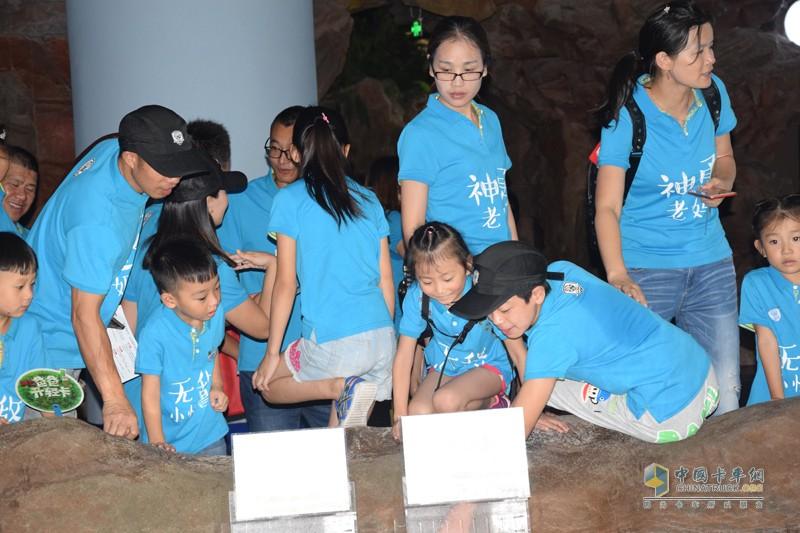 海洋馆里的动物大多都是孩子们第一次见,同行比较大的孩子们给小朋友们介绍这是什么动物,在学习中得到快乐,小朋友们不虚此行。