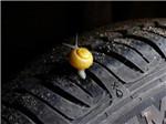 轮胎里卡了石子,抠还是不抠?