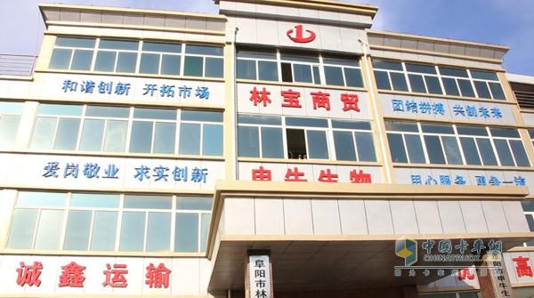 安徽阜阳林宝商贸公司