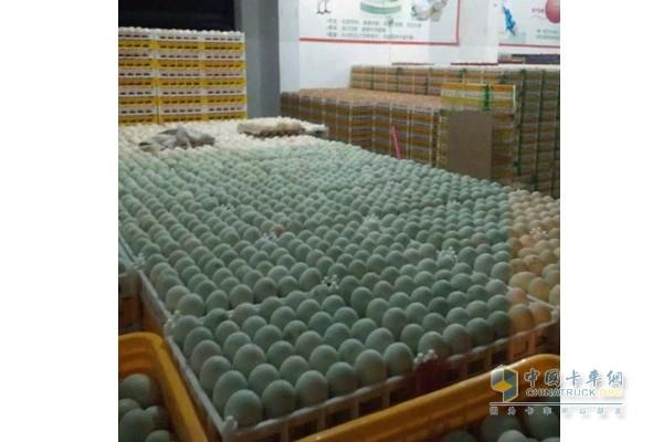黎昌波在成都文家场禽蛋市场的门市