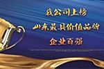 山东最具价值品牌企业 渤海活塞实至名归