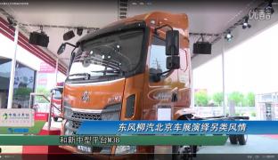 东风柳汽北京车展演绎另类风情