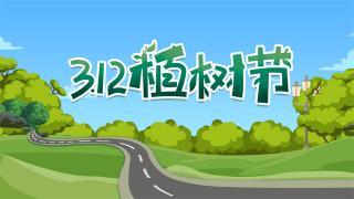 [卡车24小时]开上陕汽燃气车 秒变植树老司机