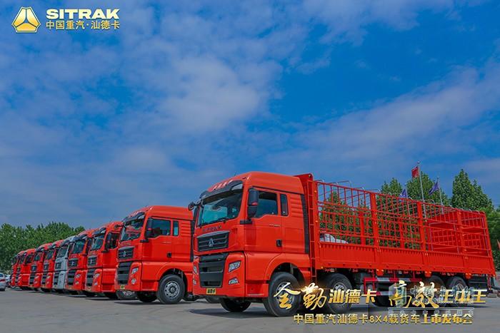 汕德卡8X4载货车