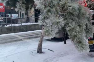 受降雪、路面结冰和大雾影响 北方数十条高速公路封闭