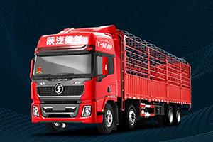 德龙X5000 8×4 绿通版载货车:天生与时间为敌!