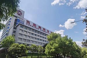见证可靠力量 东风商用车致敬中国品牌日