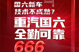 安心使用666 中国重汽国六更省油