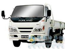 福田 时代轻卡 4×2  载货车