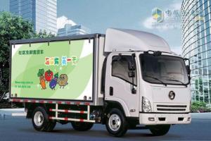 陕汽轩德9系4*2 轻型载货车